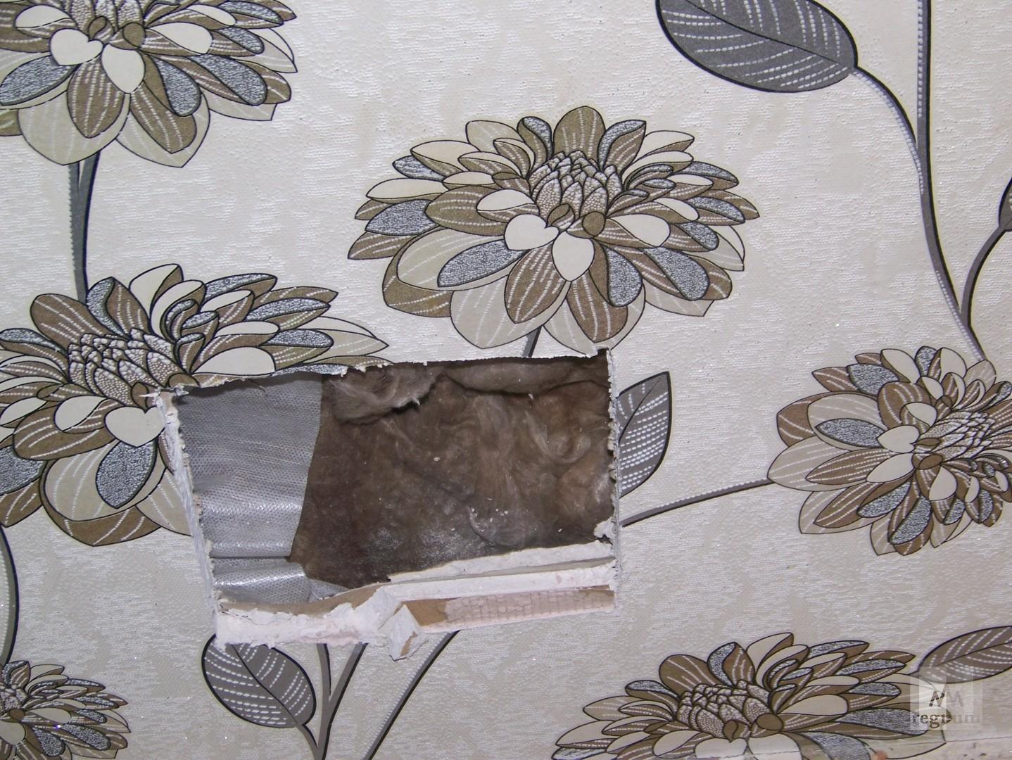 Гипсокартон и стекловата — это всё, из чего состоят стены в доме на улице Спекова в Бийске