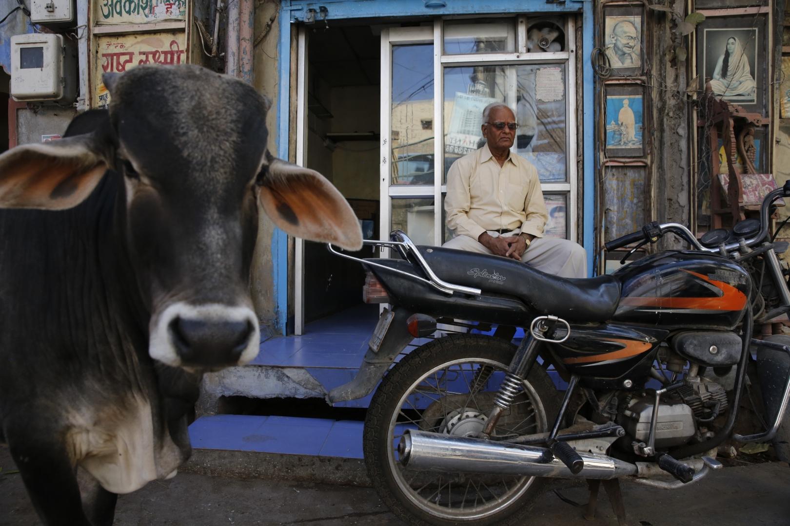 В Джодхпуре, как и во всей Индии, люди любят передвигаться на мотоциклах — по некоторым улочкам не проехать на машине. Также очень популярен велосипед