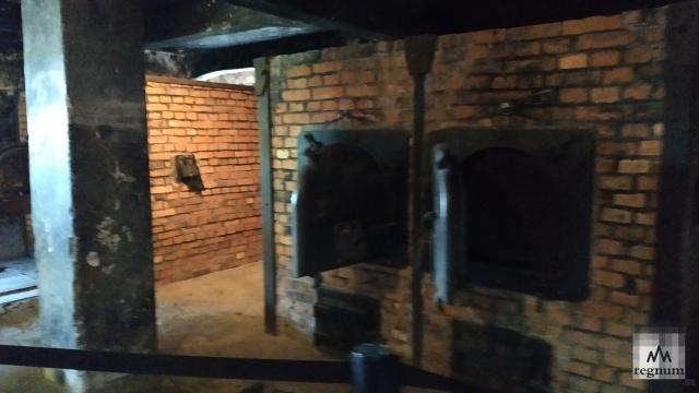 Печи крематория, где сжигали тела узников Освенцима