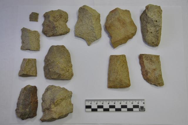 В Томской области нашли памятник археологии эпохи верхнего палеолита