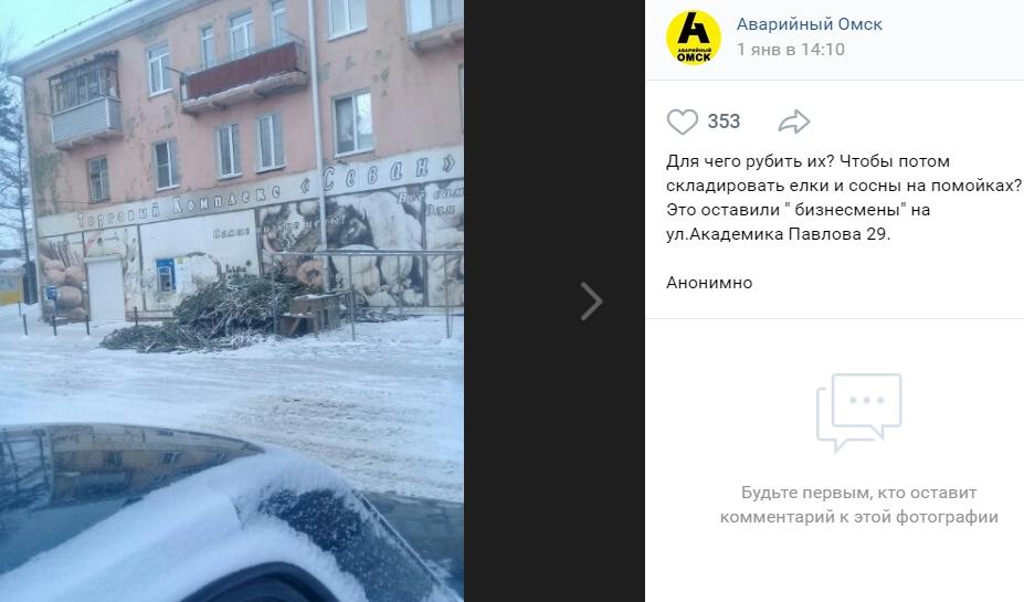 Бесхозные новогодние ёлки в Омске