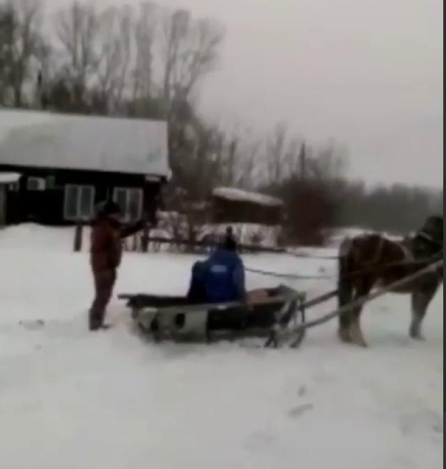 Алтайские врачи «скорой помощи» пересели на лошадей