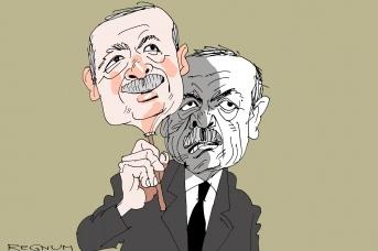 Эрдоган. Александр Горбаруков © ИА REGNUM