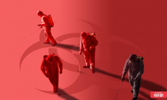 Короновирус запоздал на 8 лет? Как человечество избежало беды-2012