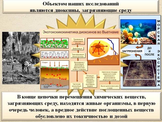 Рис. 12. Миграция диоксинов из почвы в реки и море