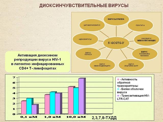 Рис. 19. Вирусы, активирующиеся диоксинами