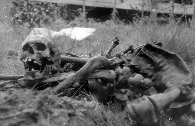 Останки советских солдат