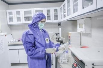 ВОЗ: в мире за сутки выявлено 284 тысячи случаев заражения SARS-CoV-2