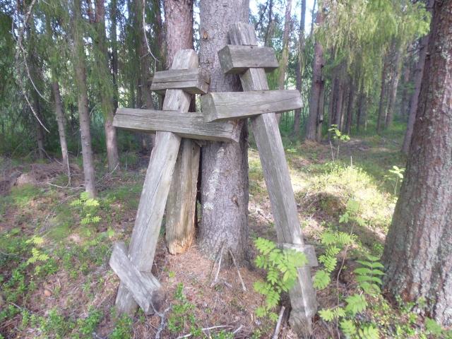 Старообрядческие кладбища на Амбурских. 2010 год. Личный архив Е. Луцковской