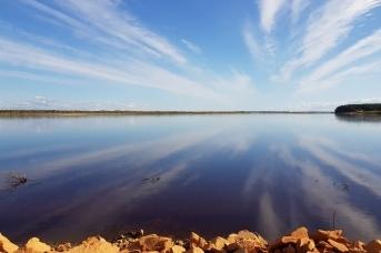 Река Мезень, куда миноги в августе каждого года заходит на нерест