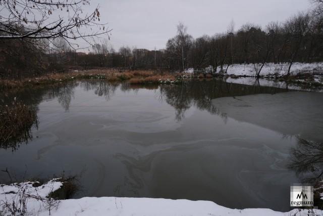 Верхний Джамгаровский пруд, подвергшийся загрязнению