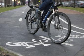 Разметка на велопешеходной дорожке