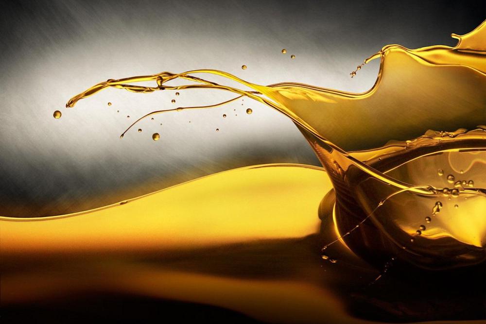 В России могут ввести экспортные пошлины на подсолнечное масло