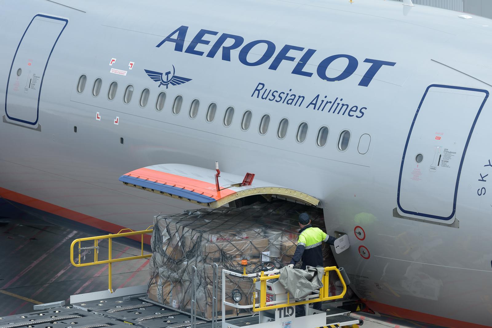 В Госдуме грозят запретить авиакомпаниям резать нормы провоза багажа