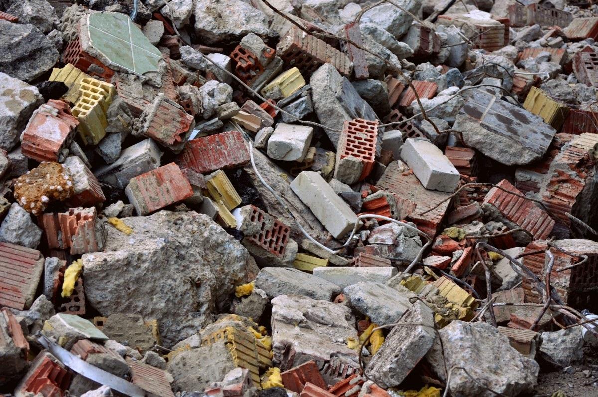 В Подмосковье готовят наказание за нарушение правил обращения с мусором