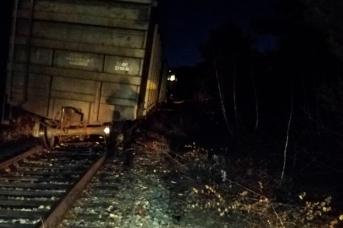 Сошедший с рельсов грузовой поезд