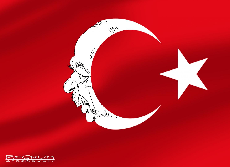 Эрдоган собрался на Луну