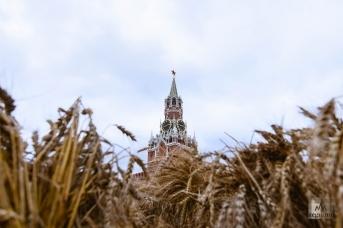 Фестиваль «Золотая осень» на Красной площади. Дарья Антонова