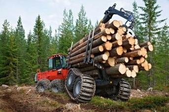 Вырубка леса. Rosleshoz.gov.ru