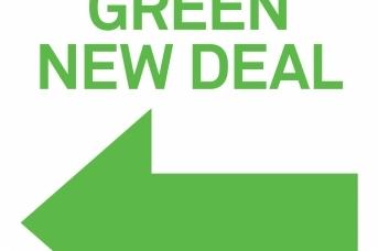 Обложка книги Энн Петтифор «За новый зеленый курс»