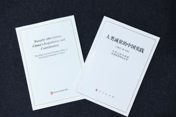 Белая книга по борьбе с бедностью