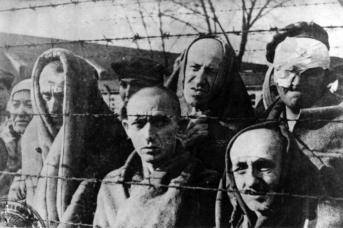 Узники концлагеря Освенцим у колючей проволоки. 1945