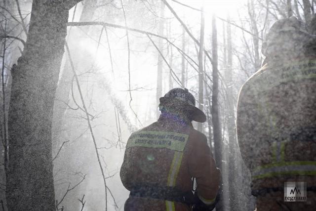 Пожарный во время командно-штабных учения на территории городских лесов