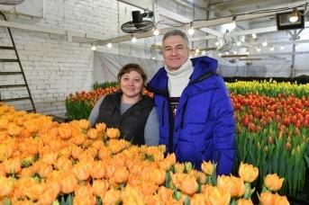 Глава Карелии с фермером Юлией Шелемех на предприятии по выращиванию тюльпанов в Прионежье