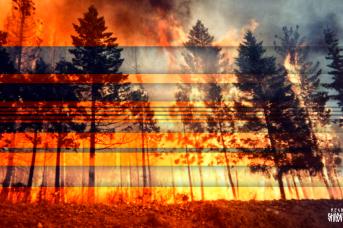 Природный пожар. Иван Шилов © ИА REGNUM
