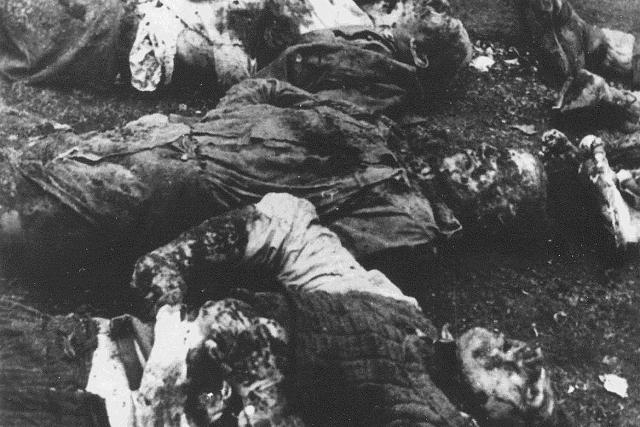 Тела убитых усташами в Сараево коммунистов-сербов
