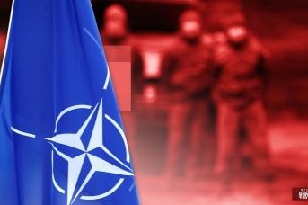 НАТО. Иван Шилов © ИА REGNUM