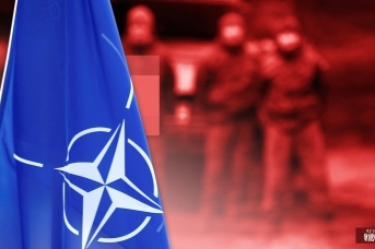 НАТО и Грузия. Иван Шилов © ИА REGNUM