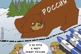 Медведь. Александр Горбаруков © ИА REGNUM