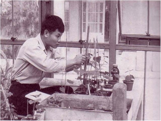 Рис. 10. Автор первого в мире сложного микробного препарата — Теруо Хига (Япония)