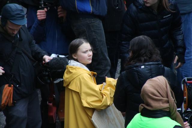 Грета Тунберг на забастовке по климату