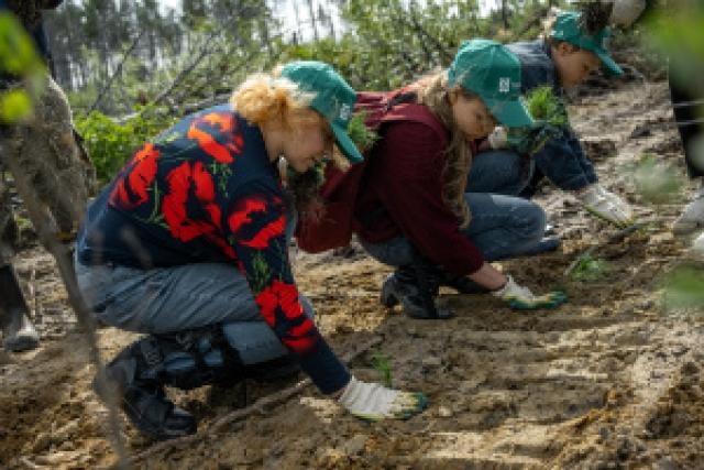 Первые высадки молодых деревьев в рамках всероссийской акции «Сохраним лес» прошли в Якутии