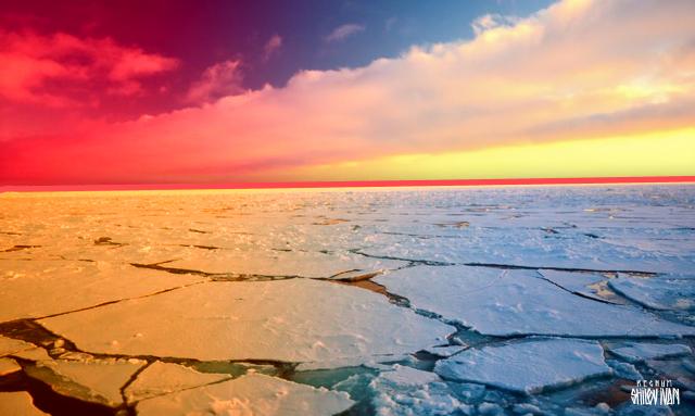 Арктика , Иван Шилов © ИА REGNUM