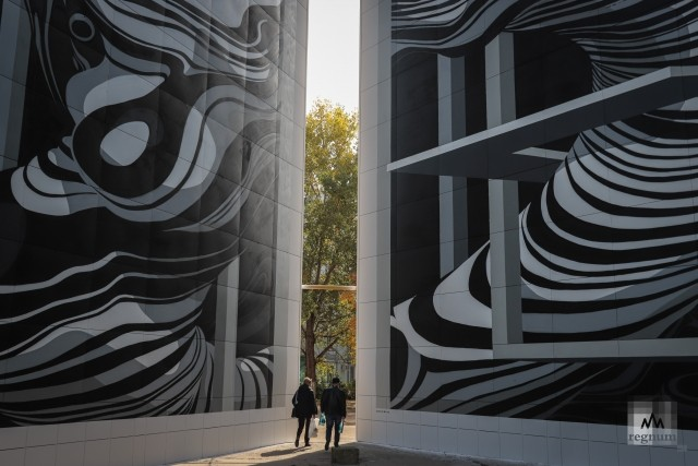 Мурал на фасаде дома Солнечнодольска